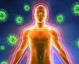 Немного про иммунитет