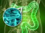 Восстановление микрофлоры