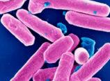 Курорты и инфекция. Как быстро уничтожить кишечную инфекцию