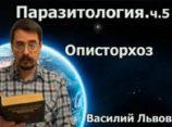 Паразитология. ч.5. Описторхоз
