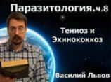 Паразитология. ч.8. Тениоз и Эхинококкоз
