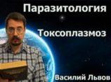 Паразитология. Токсоплазмоз