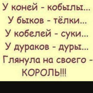 hahahariky_20201130_035714_0