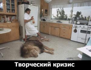 pet-lion
