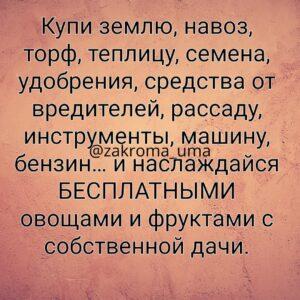zakroma_uma_20210920_005855_0