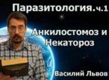 Паразитология. ч.1. Анкилостомоз и Некатороз